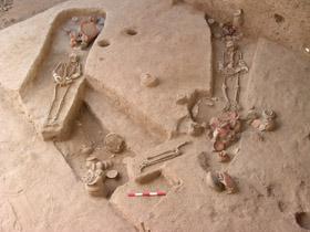 Waikato's Archeological Research